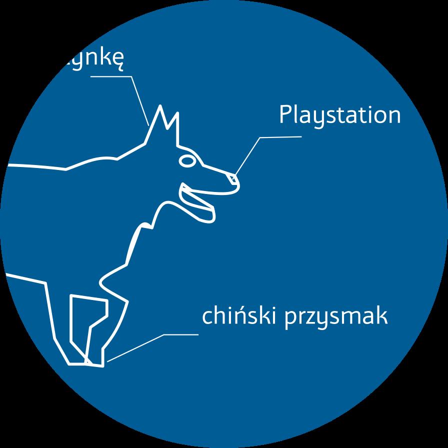 Czy psie nosy wykorzystywane są przy produkcji padów
