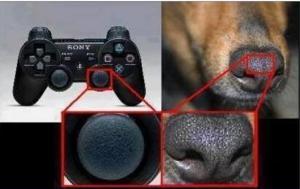 Psie nosy Playstation, Microsoft, Nintendo