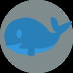 Niebieski wieloryb. Krótko o nowej niebezpiecznej legendzie